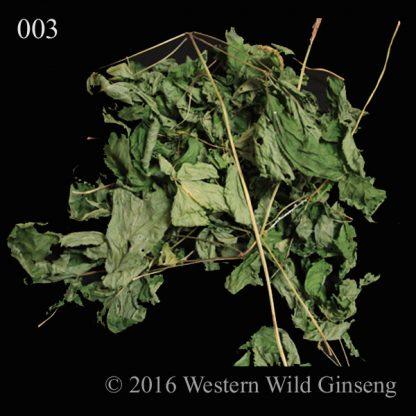 Dry ginseng leaf